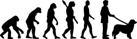 Evolución del perro Hovawart con silueta Ilustración de vector