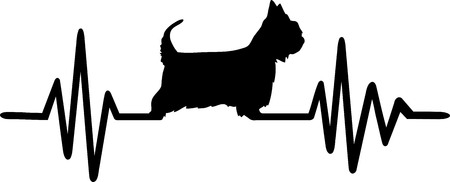 Australian Silky Terrier heartbeat frequence with silhouette