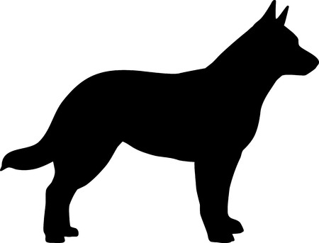 Australian Cattle Dog in black with silhouette