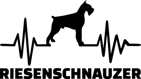 Heartbeat frequency with Giant Schnauzer dog silhouette german