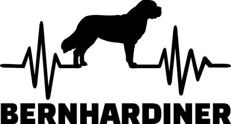 Heartbeat frequency with Saint Bernard dog german