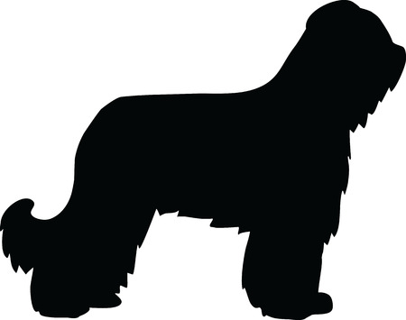 Briard in black with silhouette
