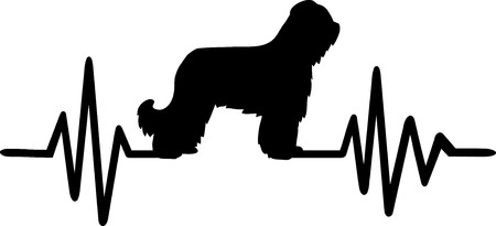 Heartbeat frequency with Briard dog silhouette