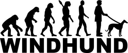 Greyhound evolution with name german