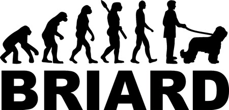 Briard evolution with dog name