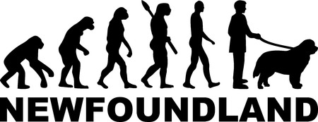 Newfoundland dog evolution with silhouette Vecteurs