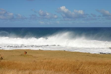 Mare, cielo e Gass a La Reunion Island