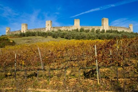 Monteriggioni city walls ans vineyard