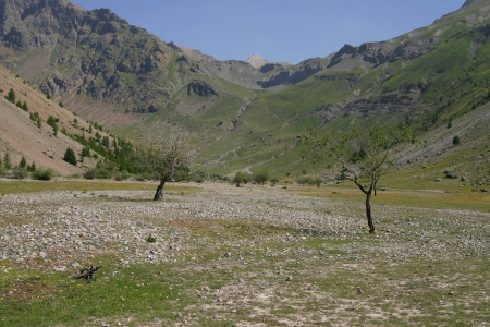 Desertic mountain valley