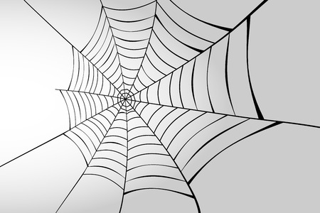 Spider web in perspective