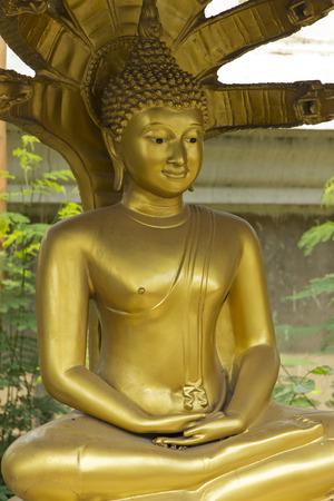 nonthaburi: Blonde  Budha statue, sculpture, image, figure Wat Kong Ka Bang Bual Tong at Nonthaburi Thailand