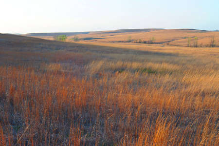 flint: Tallgrass Prairie - Kansas
