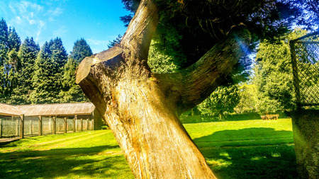 det: Madeira Beautiful Photos Stock Photo
