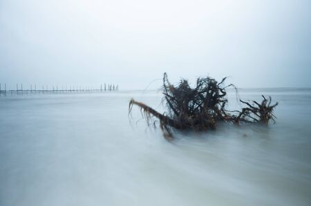 Storm at a bathing beach, gloomy mood, rough sea by high waves that wash away logs on the beach. In the background you can see a nice long wooden jetty. Stock fotó