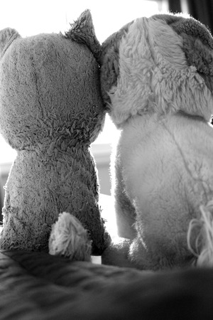 animal shot: Two stuffed animal puppies with their heads touching, looking out the window, shot in black and white.