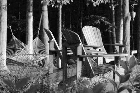Adirondack chairs and hammock in quiet, peaceful woods. photo