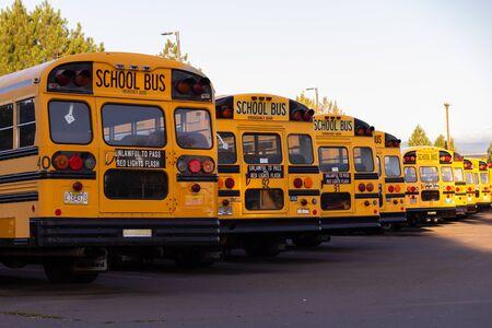 Línea de autobuses escolares estacionados en una fila durante el amanecer. De vuelta a la escuela.
