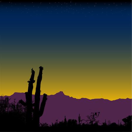 cactus desert: Saguaro cactus woestijn berg bereik op nightfall of aanbreken. Stock Illustratie