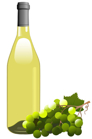 white riesling grape: Attractive Rhone shaped bottle of wine, and a bunch of white grapes. Illustration