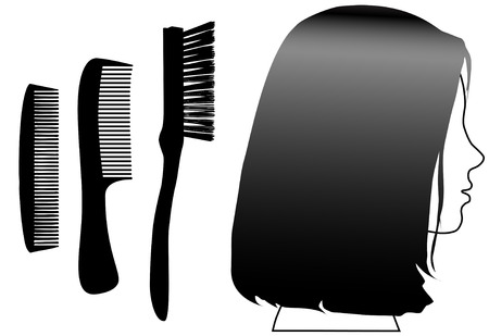 hairbrush: Hair care set: A model profile with clean shiny brunette hair, and 2 styling combs and a hairbrush. Illustration