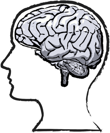 Rough but thoughtful sketch-like grunge of human brain in a silhouette head Vector