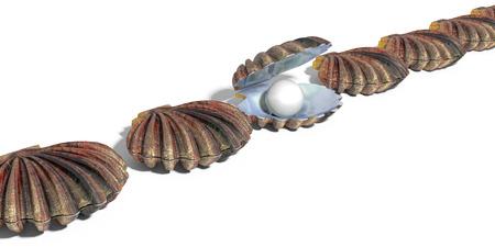 Zoek een kostbare parel van grote waarde in oester schelp in een rij van schelpen 3D render