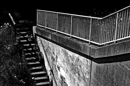 pflanzen: Eine Treppe an einer Betonwand Stock Photo