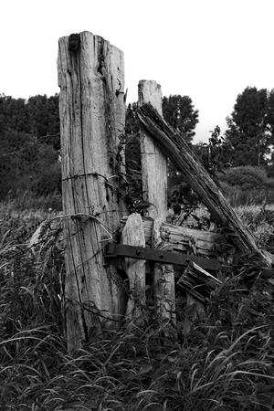 Ein alter Zaunpfosten vom Weidezaun Standard-Bild - 85947248