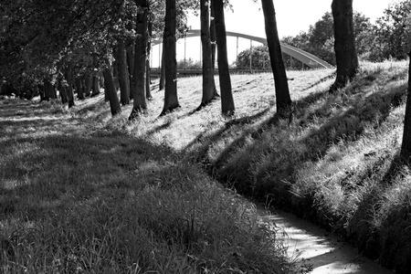 Een stroom op de dijk Stockfoto