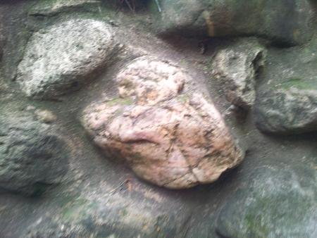 ピンクの岩を見る