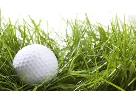 Golf ball hidden in high grass (