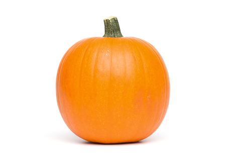 Just a simple shot of an isolated Pumpkin