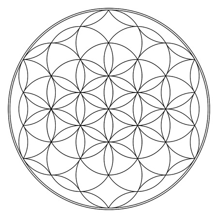 chakra: Flower of life, buddhism chakra illustration, simple pattern