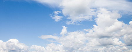 panoramic sky: Different types of clouds on blue sky, sea gulls flying, panoramic image.