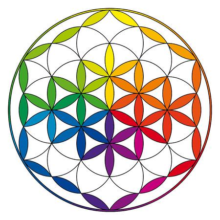 Fiore della vita, buddismo illustrazione chakra con il modello ruota colore