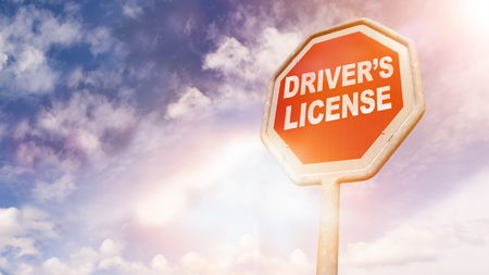 Drivers License, text on red traffic stop sign in front of cloudy blue sky with lens flares Zdjęcie Seryjne