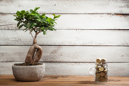 Wood table with bonsai tree and overflow of money coins in a glass jar as reaching goals