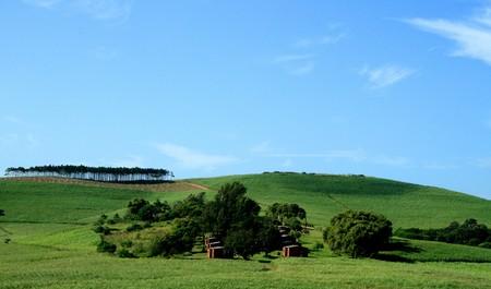green field Stock Photo - 3989827