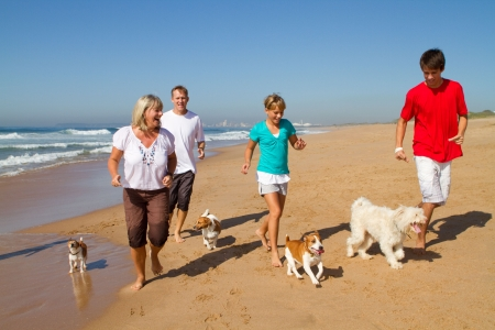 holiday pets: active family on beach with pets