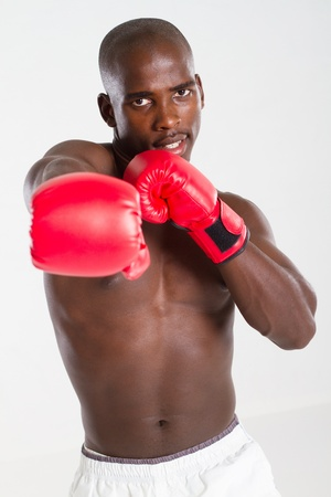 african boxer photo