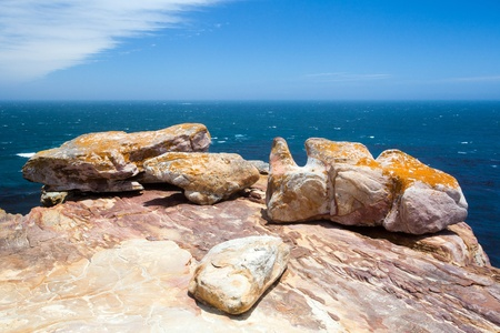 rocks on cape of good hope, south africa photo