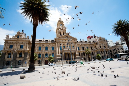 pigeons flying over city hall of cape town, south africa photo