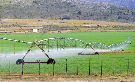 pivotal: farm field irrigation system watering plants Stock Photo