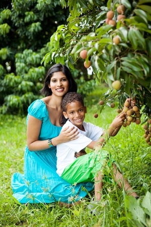 happy indian mother and son picking lychees together photo