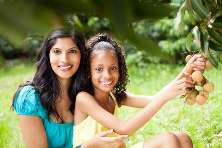 pretty young mother and daughter picking litchis photo