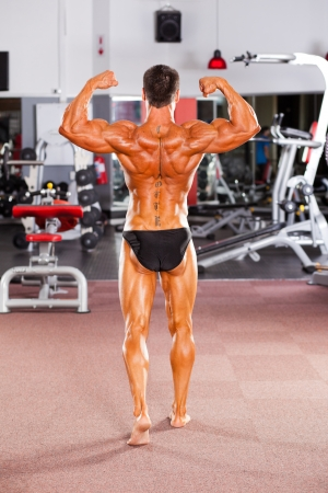 rear view of male bodybuilder posing in gym Stock Photo - 13738316