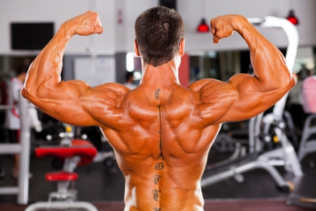 back muscles: rear view of male bodybuilder