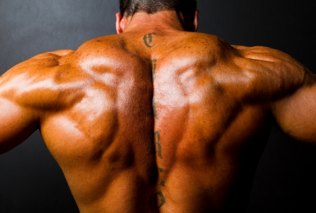 body building: muscular bodybuilders back on black background