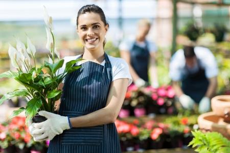 felice proprietario vivaio femminile con vaso di fiori a effetto serra all'interno