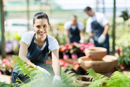 vivero: trabajador feliz guardería hembra recorte de plantas en invernadero